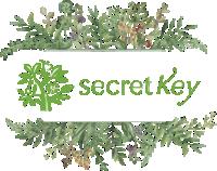 secret-key0001