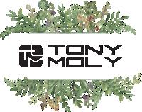 tony-moly01