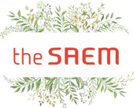 the saem лого liuliu.ru