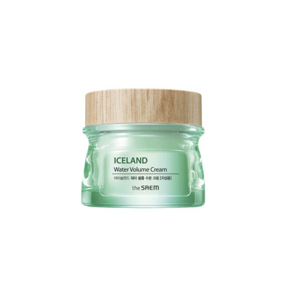 krem-the-saem-iceland-water-volume-hydrating-cream-for-oily-skin