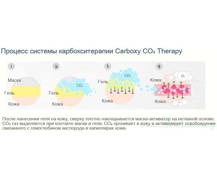 carboxy-dejstvie